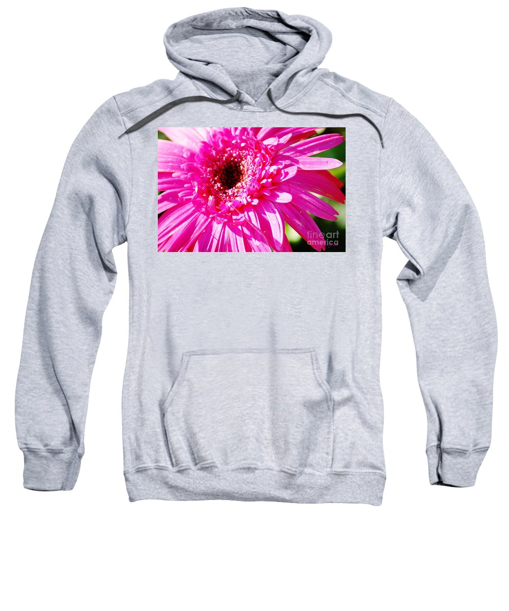 Pink Sweatshirt featuring the photograph Pink Gerber by Donna Bentley
