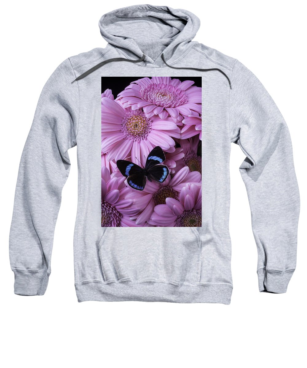 Pink Sweatshirt featuring the photograph Pink Gerbera Daises And Butterfly by Garry Gay