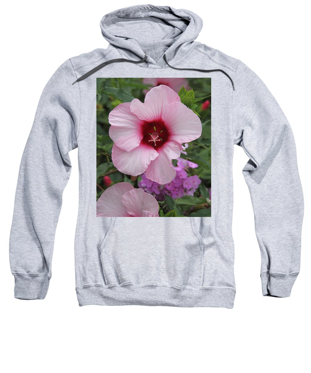 Flower Sweatshirt featuring the photograph Pink Hibiscus by Allen Nice-Webb