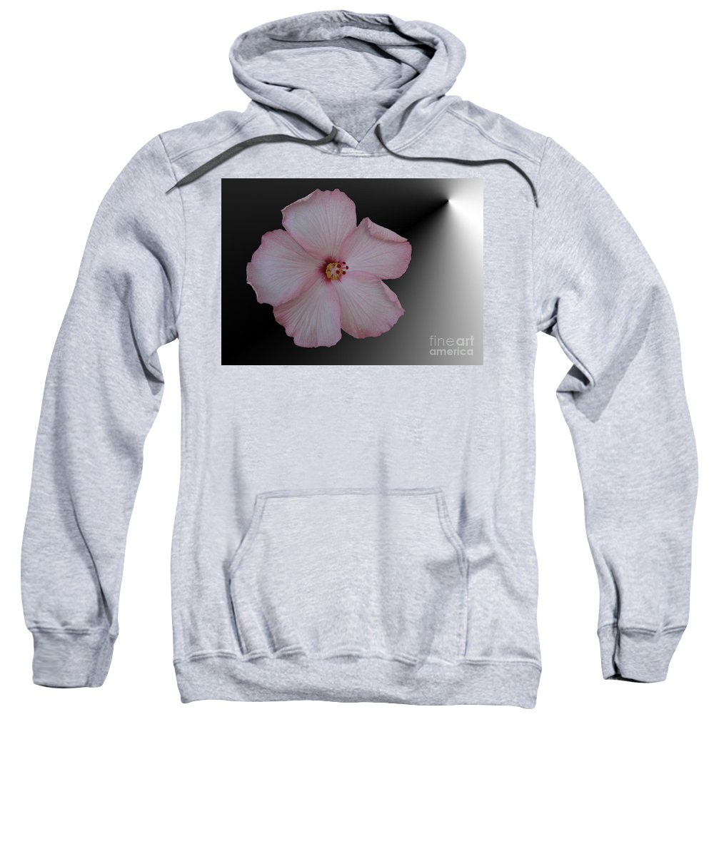 Hibiscus Sweatshirt featuring the digital art Pink Hibiscus by Donna Brown