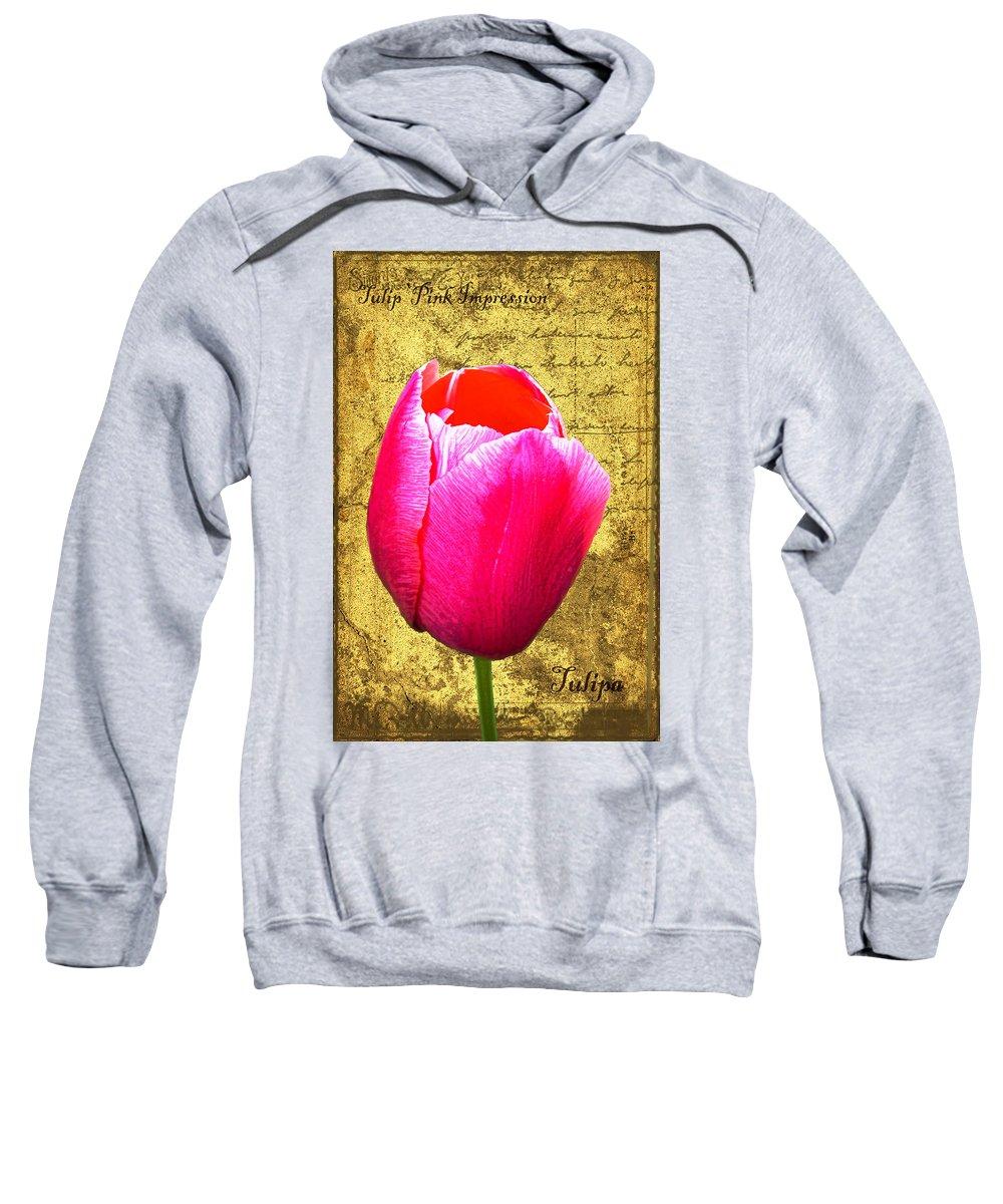 Pink Sweatshirt featuring the digital art Pink Impression Tulip by Teresa Mucha