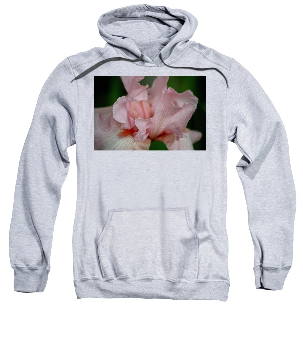 Iris Sweatshirt featuring the photograph Pink Iris Study 2 by Teresa Mucha