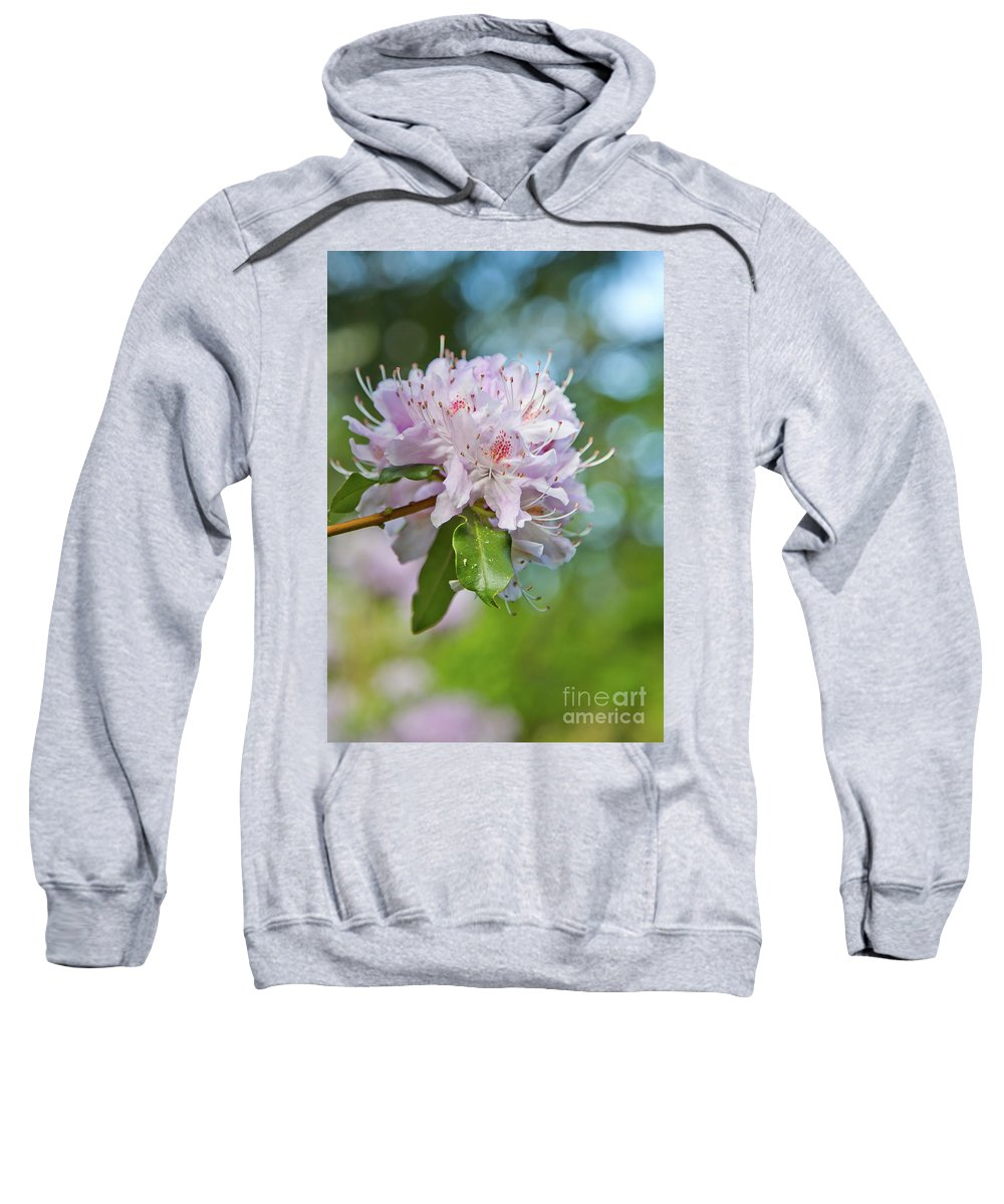 Pink Flowers Sweatshirt featuring the photograph Pink Love 6 by Alex Art and Photo