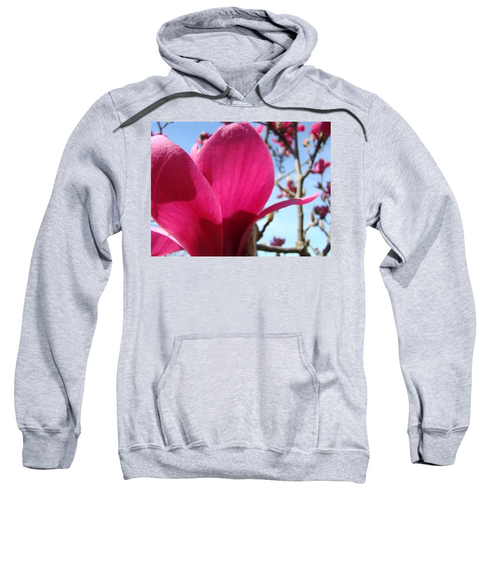 Magnolia Sweatshirt featuring the photograph Pink Magnolia Flowers Magnolia Tree Spring Art by Baslee Troutman