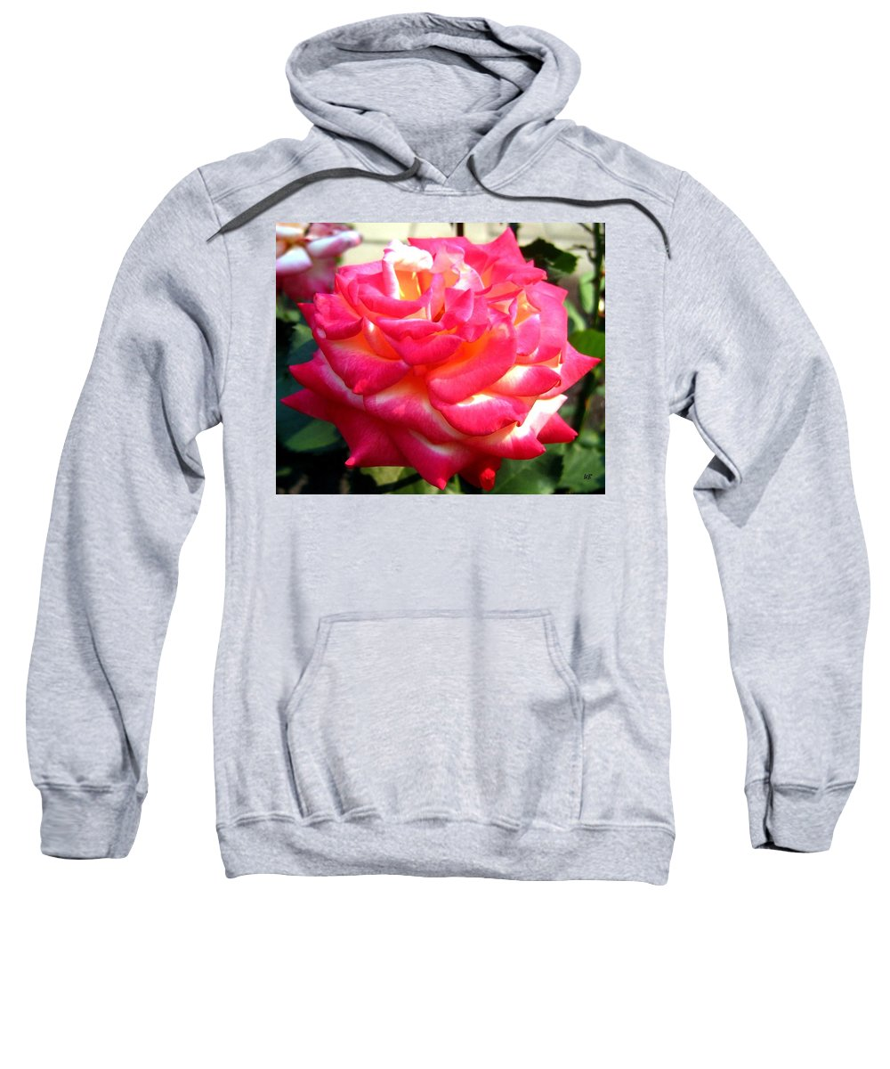 Rose Sweatshirt featuring the photograph Pink Perfection by Will Borden