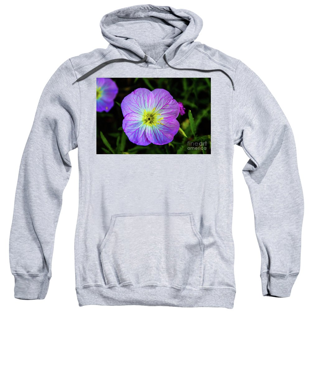 Primrose Sweatshirt featuring the photograph Pink Primrose by Kevin Gladwell