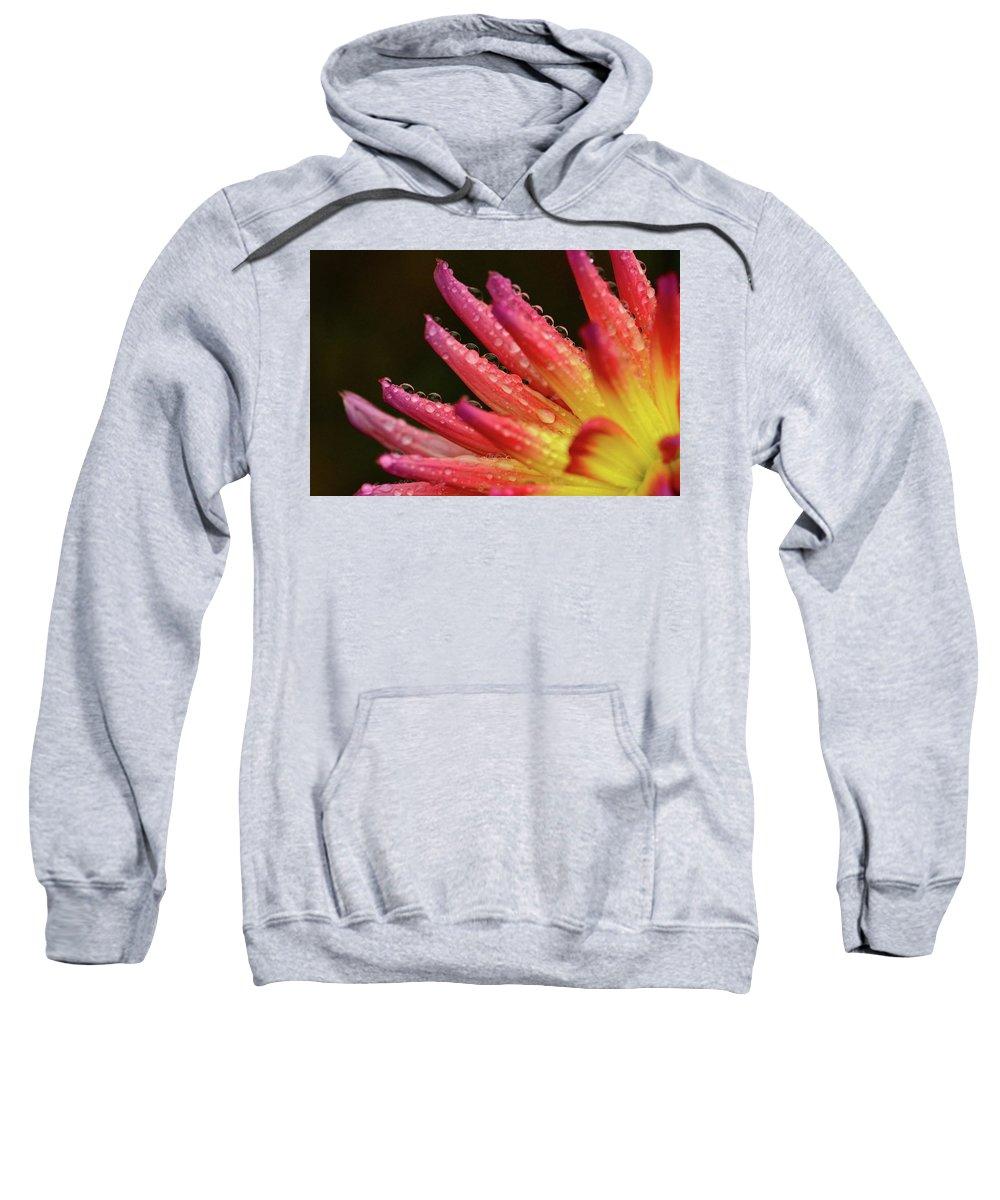 Sweatshirt featuring the photograph Pink Rain by Glen Baker