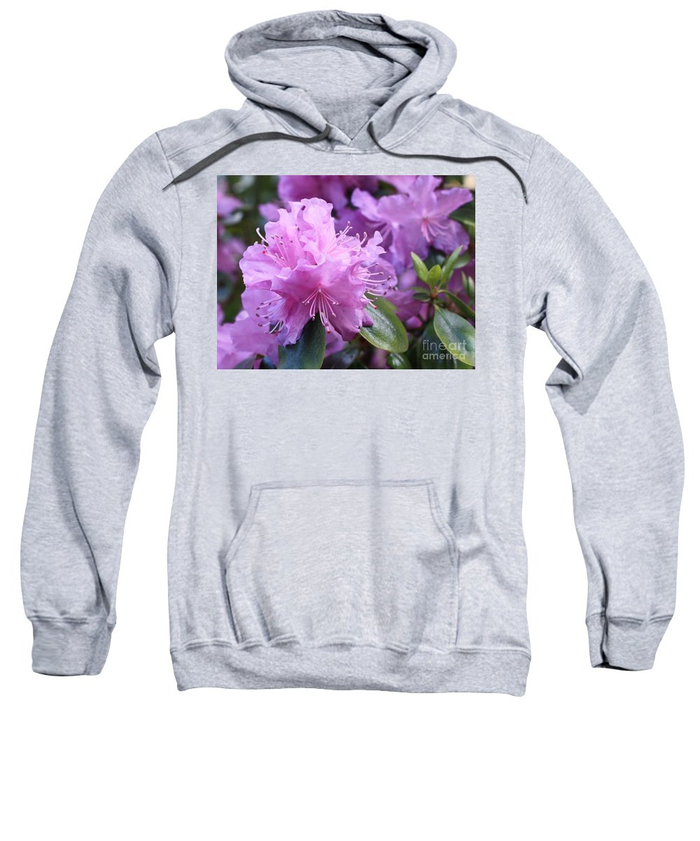 Flower Sweatshirt featuring the photograph Light Purple Rhododendron With Leaves by Carol Groenen