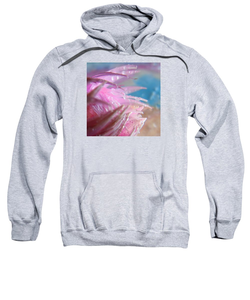 Cropped Sweatshirt featuring the photograph Pink Splashes Macro by Barbara St Jean