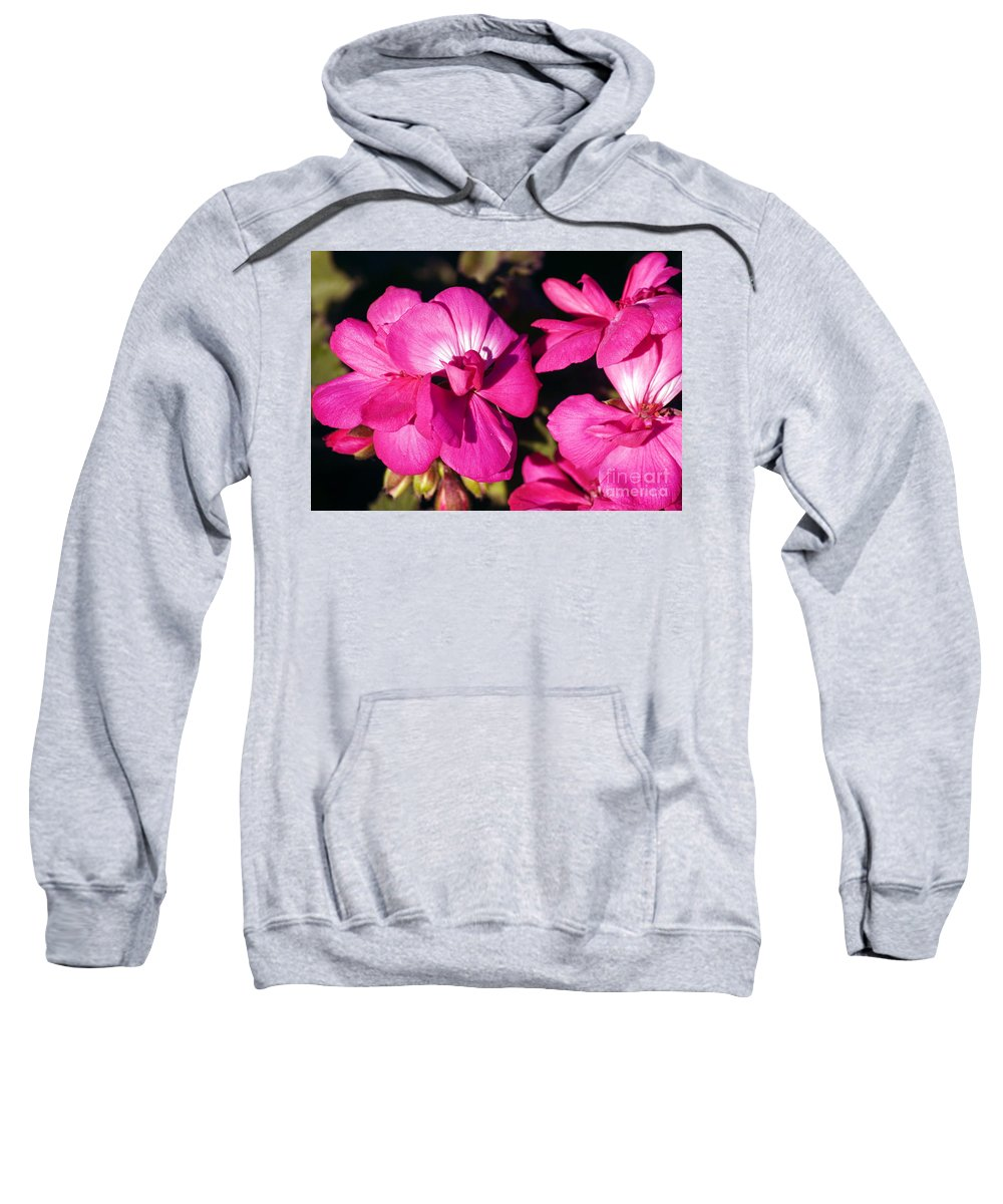 Clay Sweatshirt featuring the photograph Pink Spring Florals by Clayton Bruster