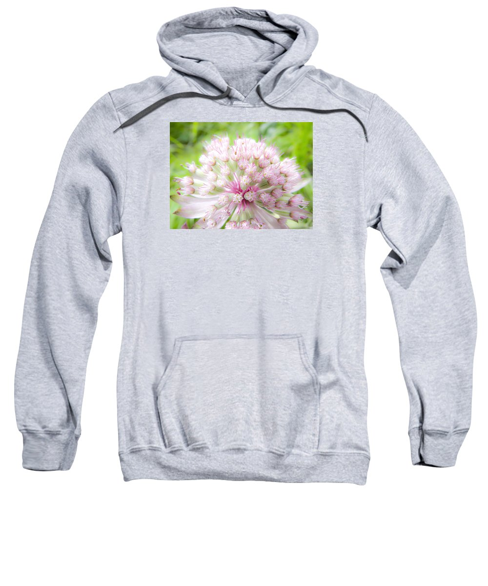 Forest Sweatshirt featuring the photograph Pink Summer by Irina Effa