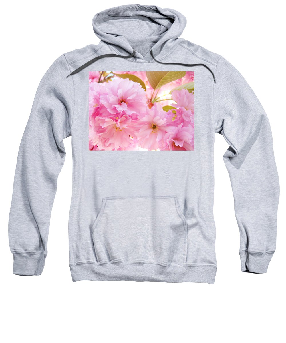 Blossom Sweatshirt featuring the photograph Pink Tree Blossoms Art Prints Spring Blossoms Baslee Troutman by Baslee Troutman