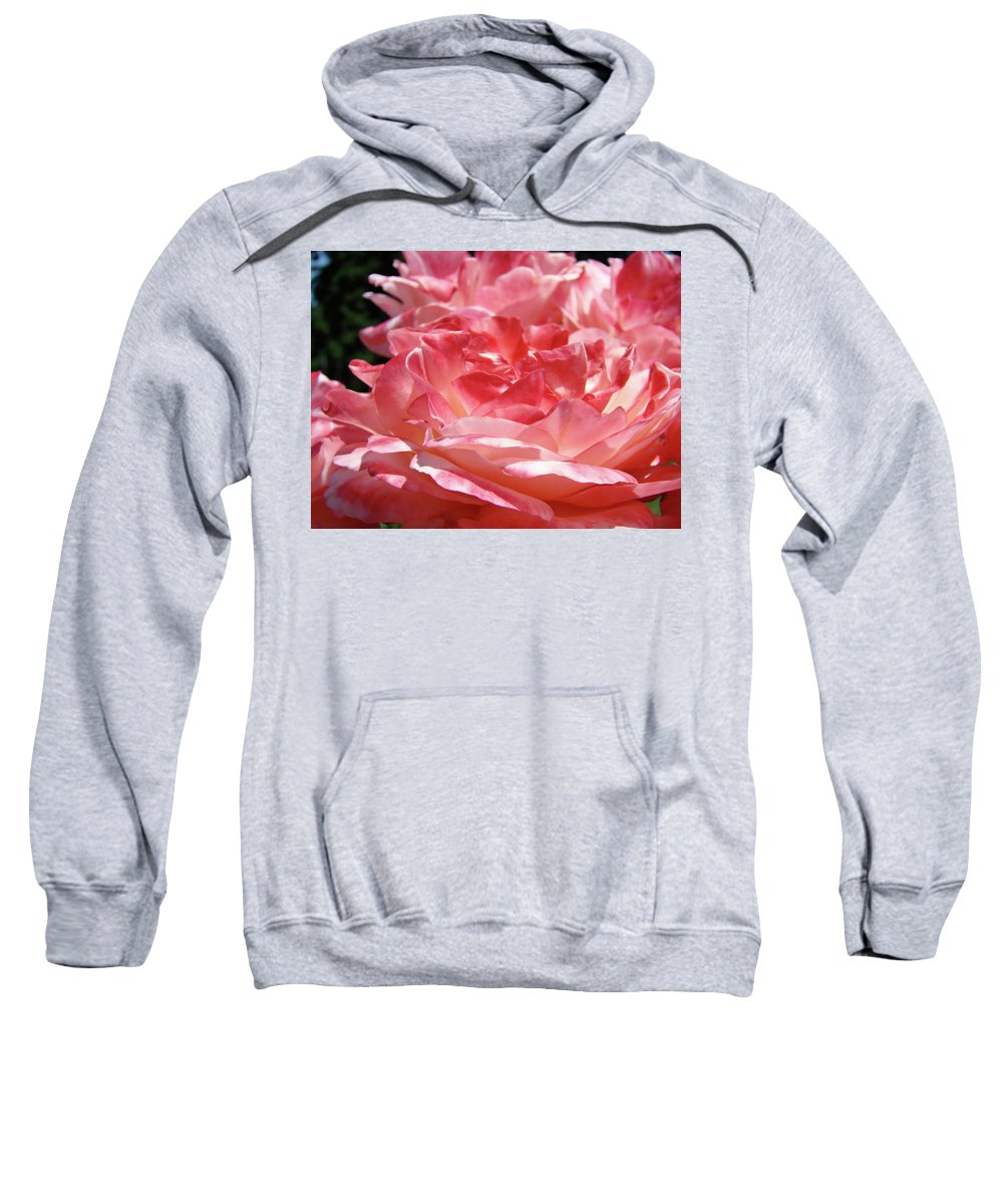 Rose Sweatshirt featuring the photograph Pink White Roses Floral Art Prints Rose Baslee Troutman by Baslee Troutman