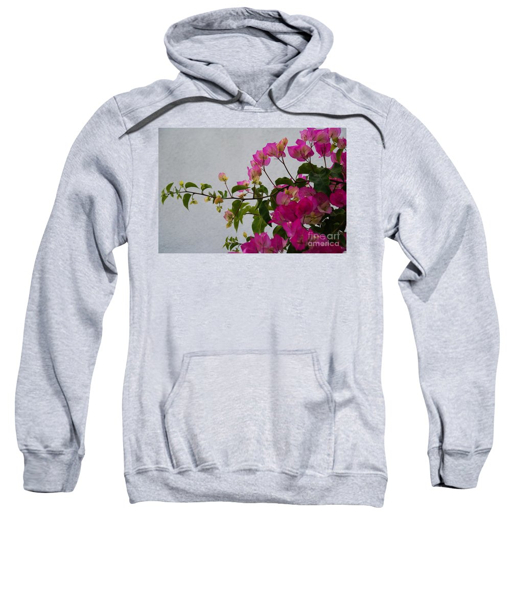 Bougainvillea Sweatshirt featuring the photograph Pinks Portrait by Linda Shafer