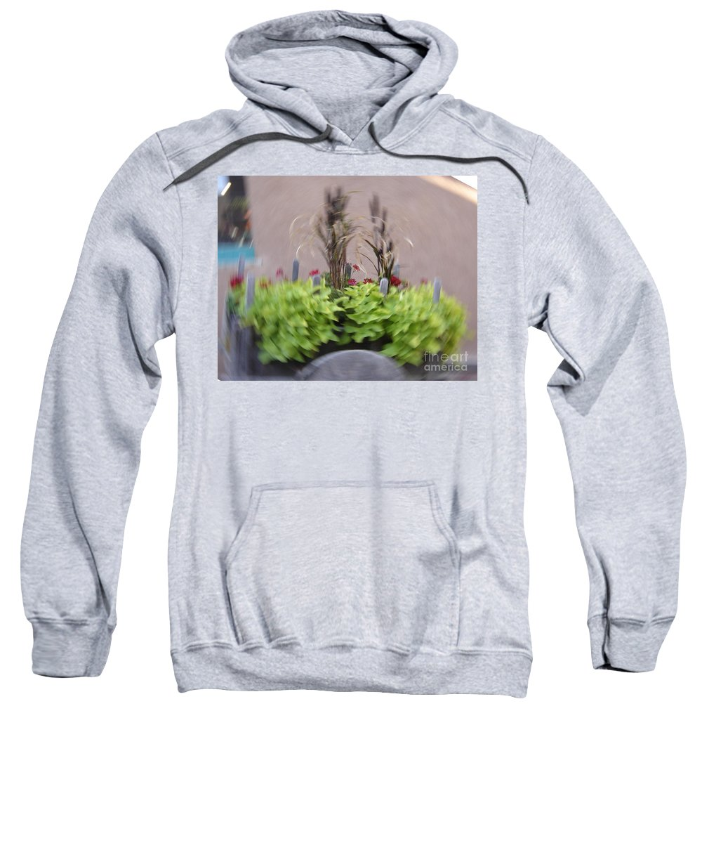 Plants Sweatshirt featuring the photograph Plant Circle by Mary Rogers