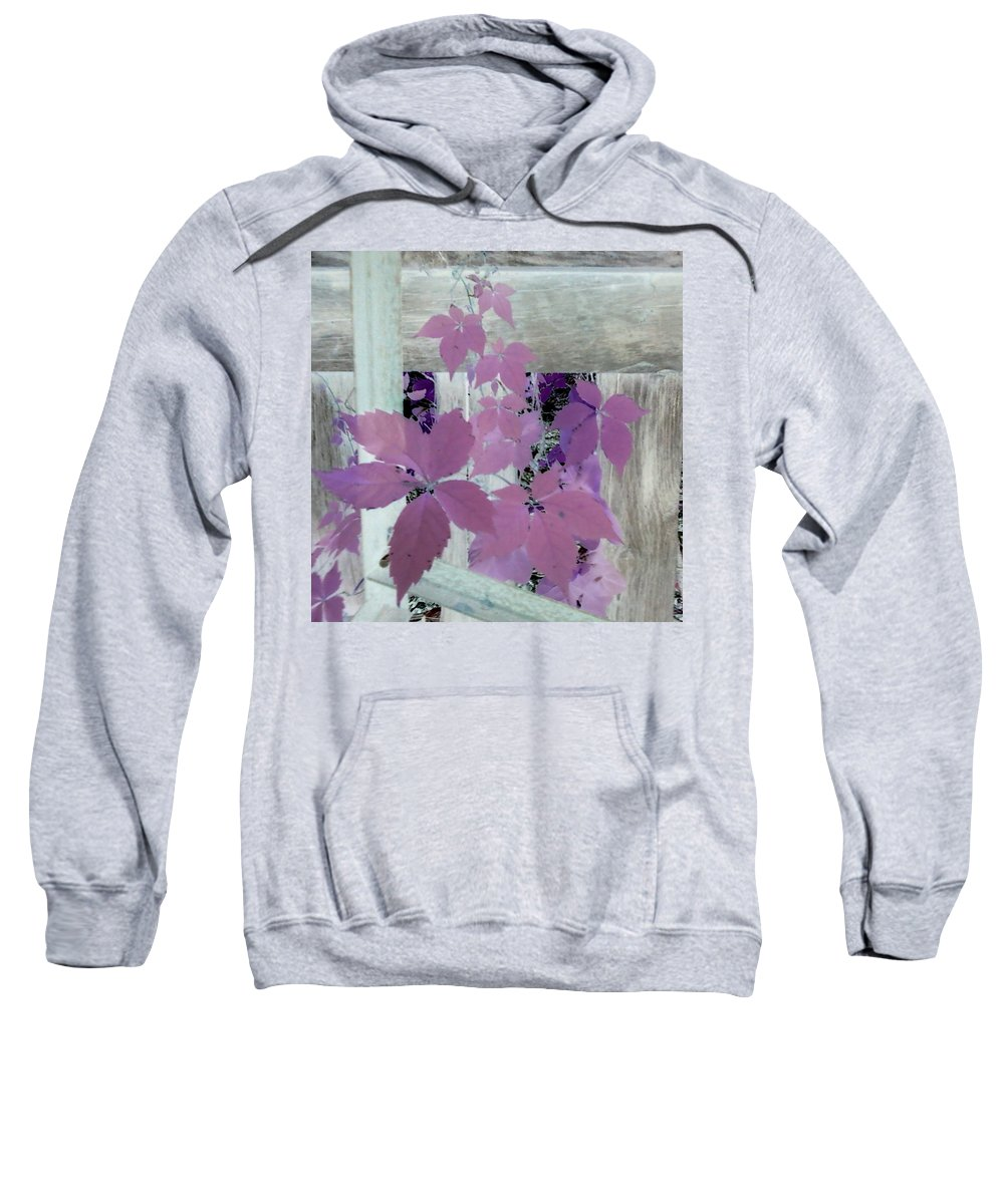 Barn Wood Plant Old Purple Sweatshirt featuring the photograph Plant In Negative by Cindy New