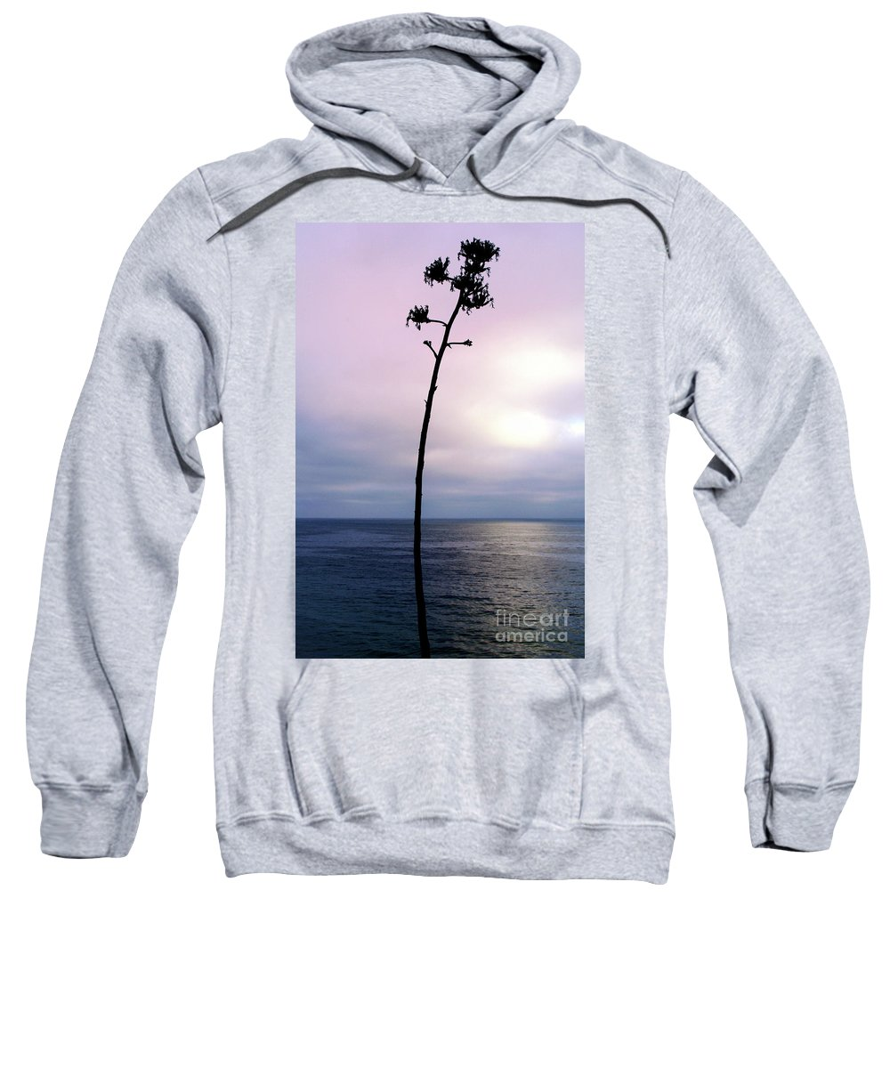 Ocean Sweatshirt featuring the photograph Plant Silhouette Over Ocean by Mariola Bitner