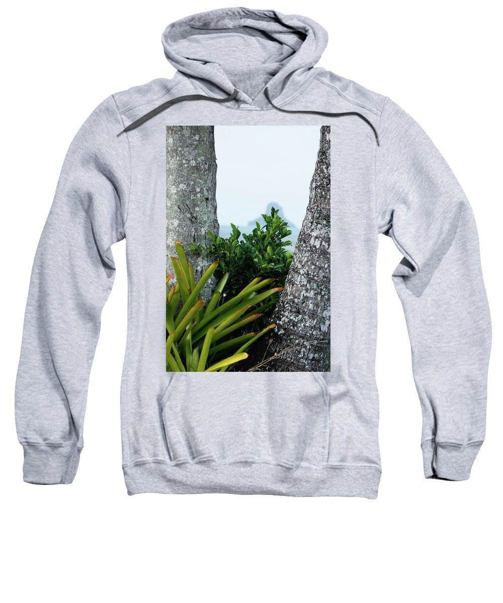Tropics Sweatshirt featuring the photograph Plantside The Island by Nick Mattea