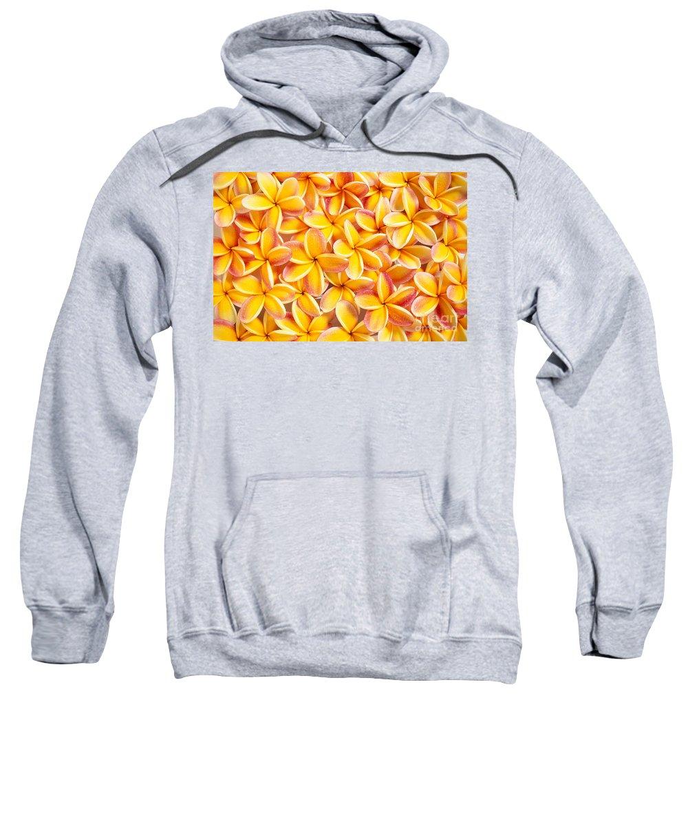 Arrange Sweatshirt featuring the photograph Plumeria Flowers by Kyle Rothenborg - Printscapes