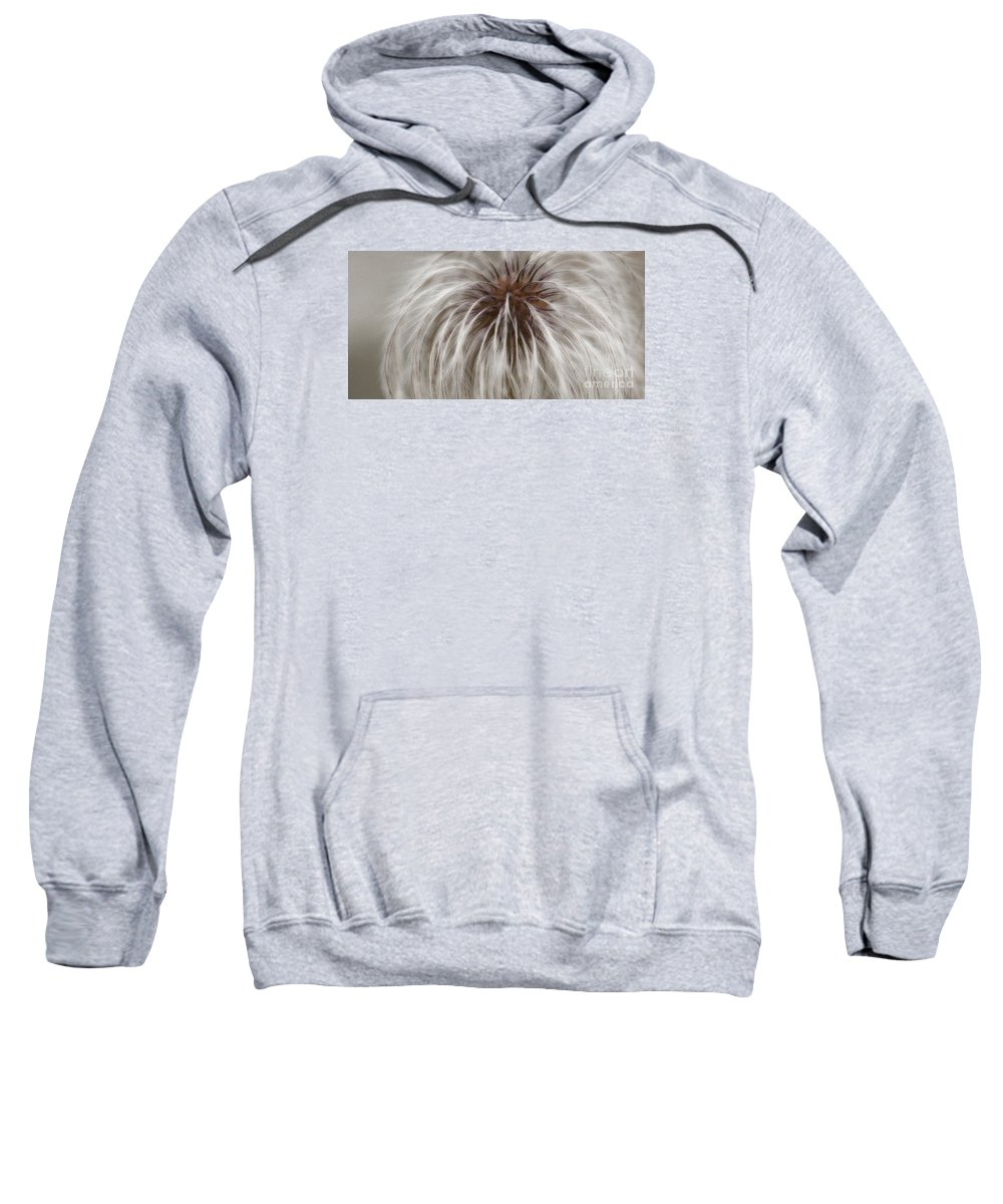 Plume Sweatshirt featuring the photograph Plumosa by Linda Shafer