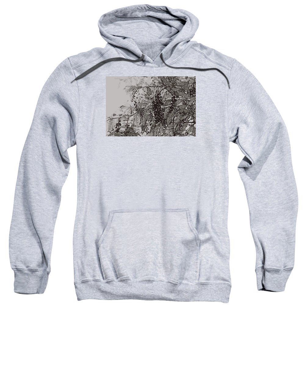 Pokeweed Sweatshirt featuring the photograph Pokeweed by Linda Shafer