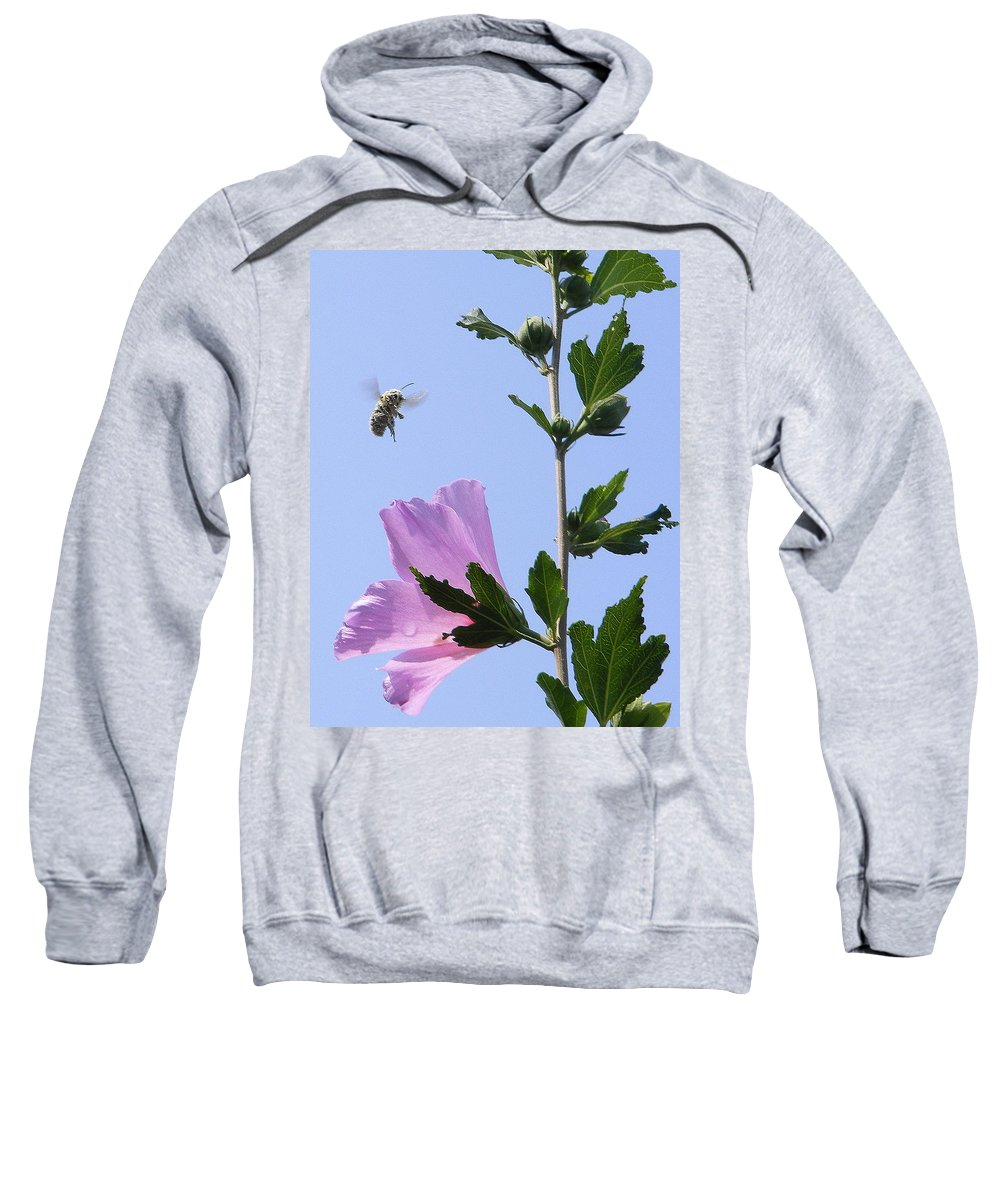 Landscape Sweatshirt featuring the photograph Pollen Nation by Ed Smith