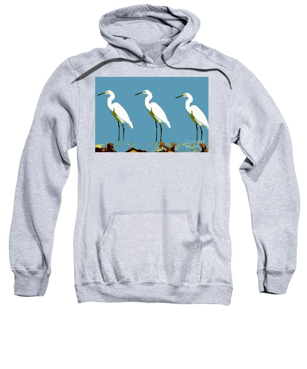 Egrets Sweatshirt featuring the painting Pop Egrets by David Lee Thompson
