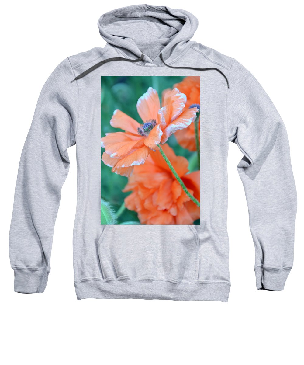 Papaver Somniferum. Opium Sweatshirt featuring the photograph Poppy Passion by Angelina Vick