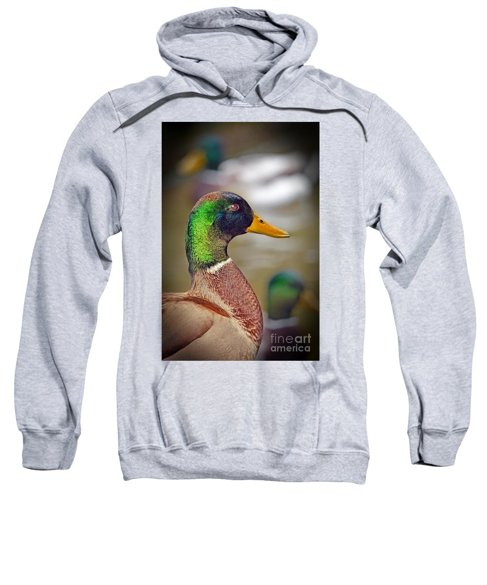 Duck Sweatshirt featuring the photograph Portrait Of A Mallard by Jim Fitzpatrick
