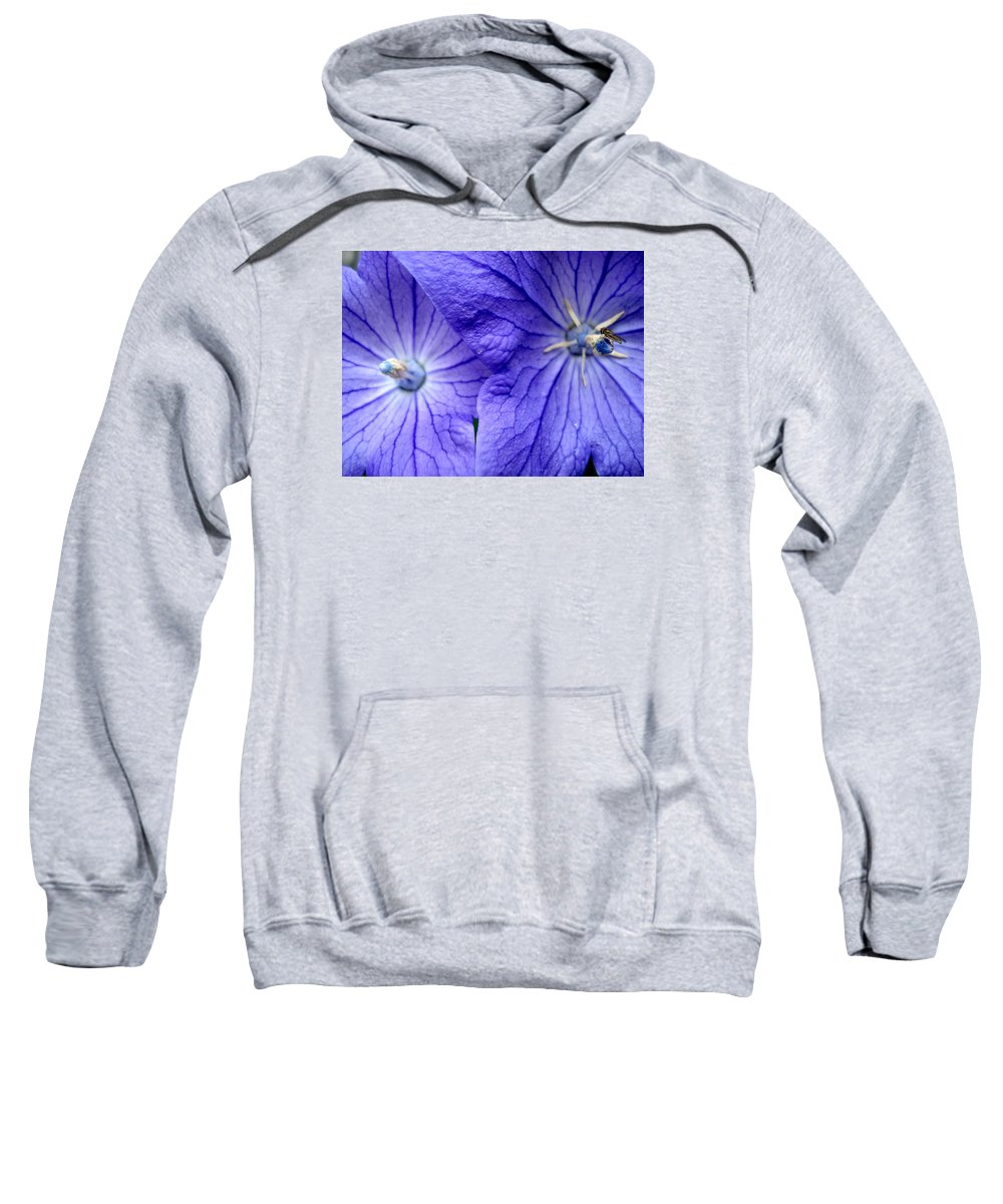 Flowers Sweatshirt featuring the photograph Powder 2 by Nelson F Martinez