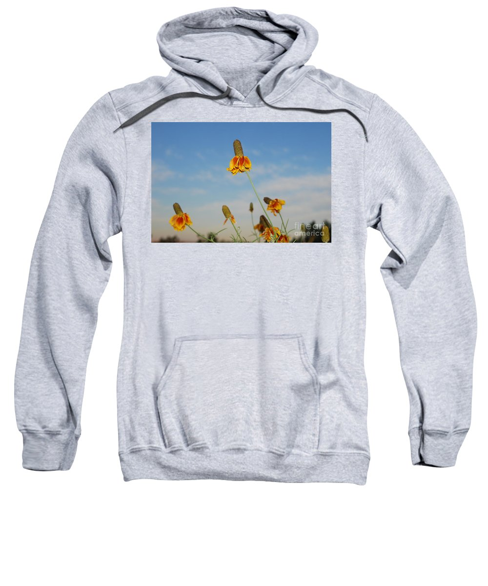 Sweatshirt featuring the photograph Prairie Cone Flowers Against Blue Sky Horizontal Number Three by Heather Kirk