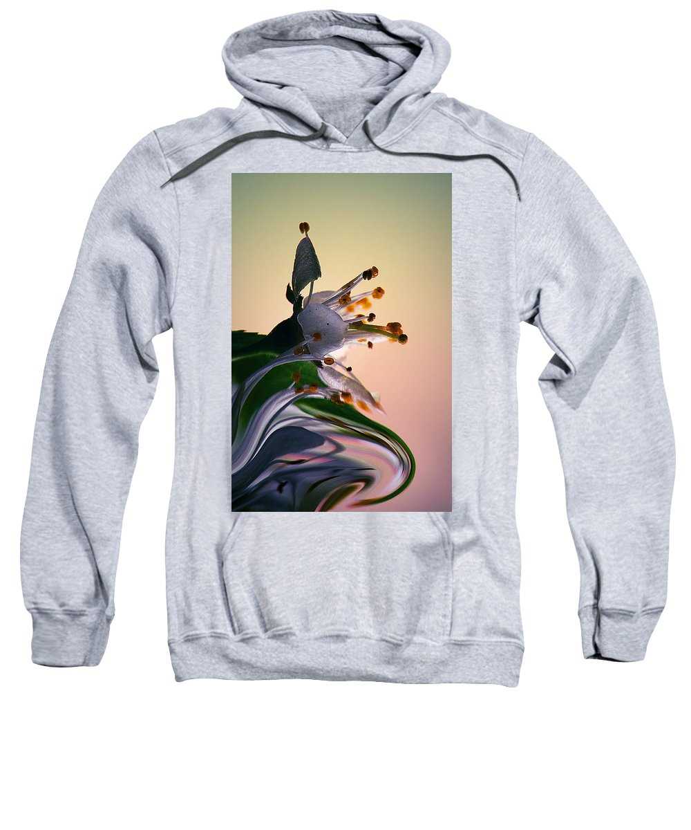 Flowers Sweatshirt featuring the photograph Praise For The Morning... by Arthur Miller