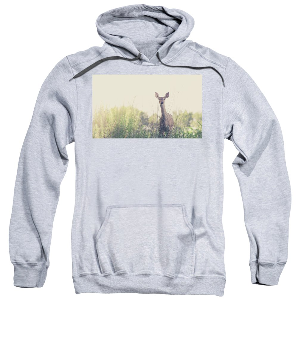 Deer Outdoor Nature Hunt Wild Sweatshirt featuring the photograph Presence by Lyssa Peace