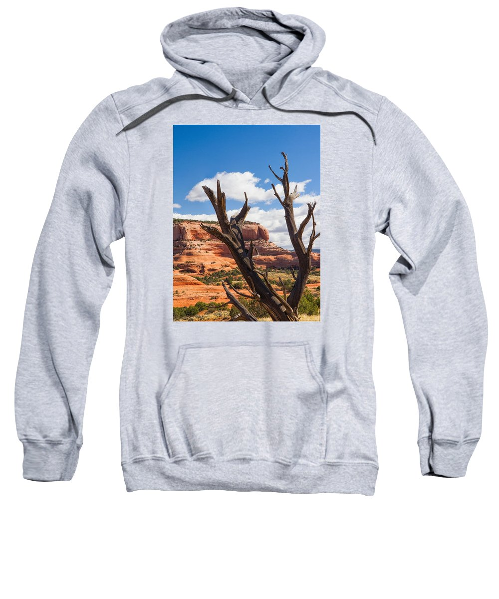 Utah Sweatshirt featuring the photograph Preserved by Daniel George