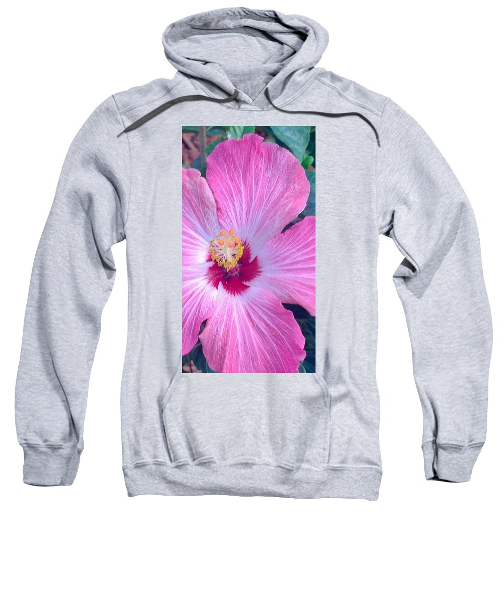 Hibiscus Sweatshirt featuring the photograph Pretty In Pink by Gayle Miller
