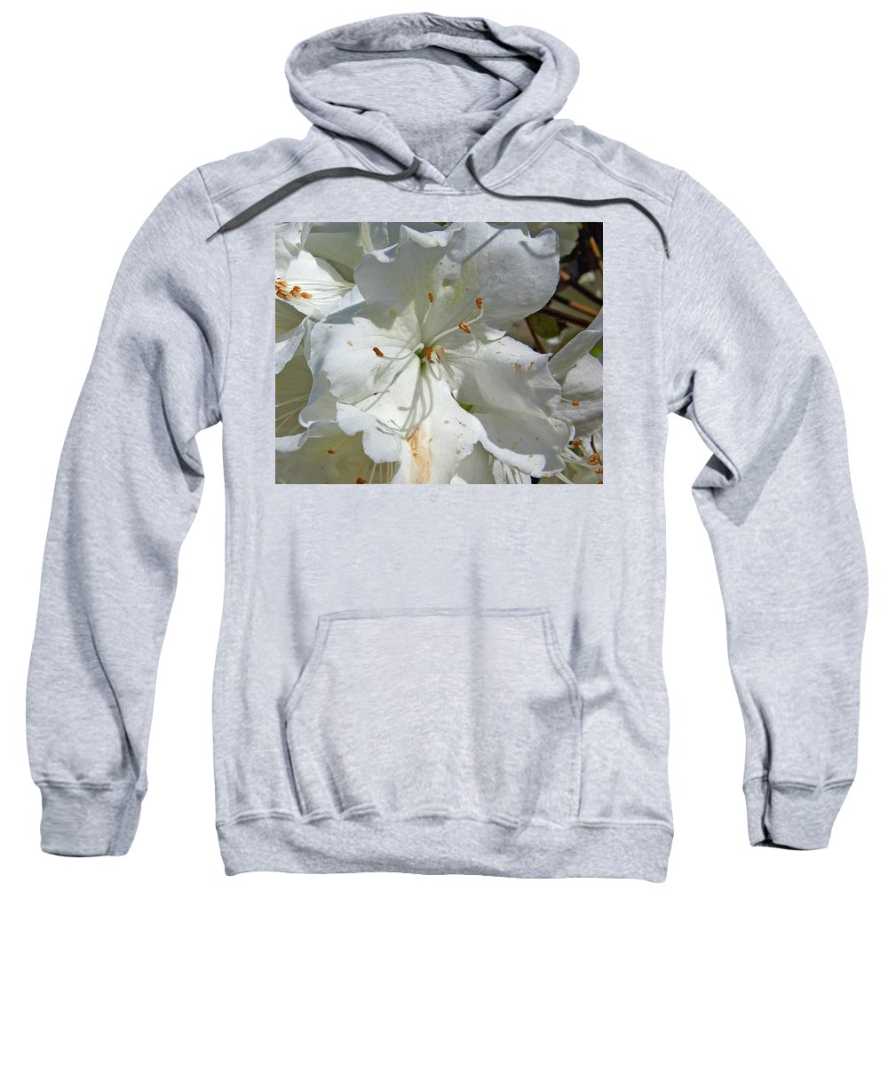Flower Sweatshirt featuring the photograph Pretty In White by Gary Adkins