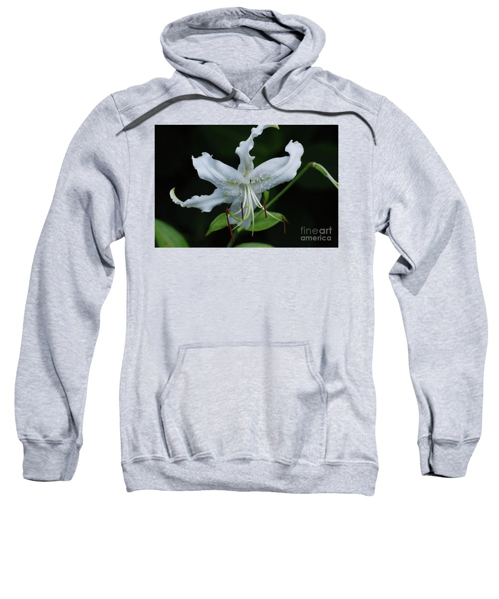 Lily Sweatshirt featuring the photograph Pretty White Stargazer Lily Flower Blossom by DejaVu Designs