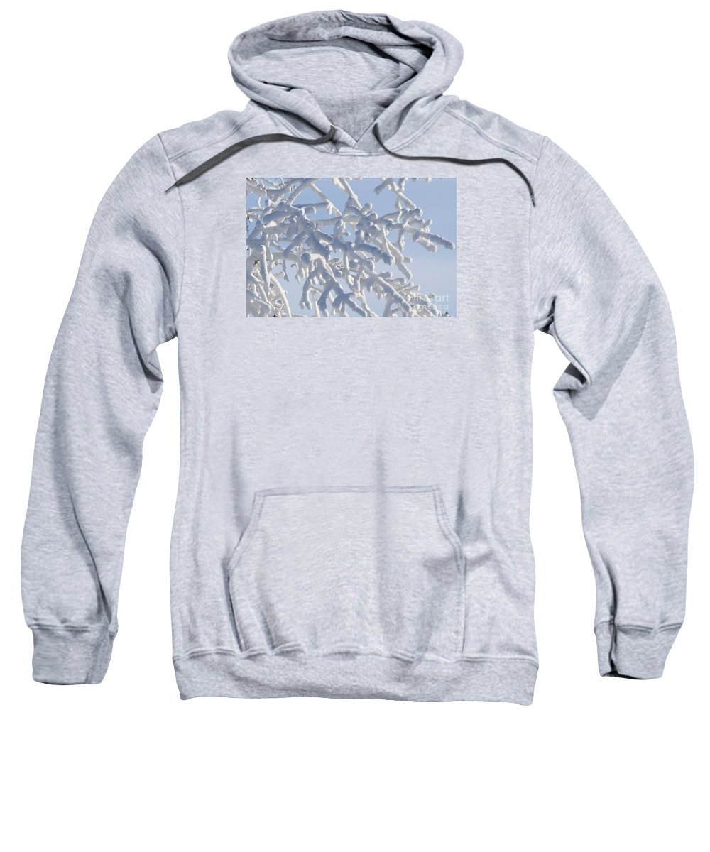 Snow Sweatshirt featuring the photograph Pudgy Winter Fingers by Peter Jamieson