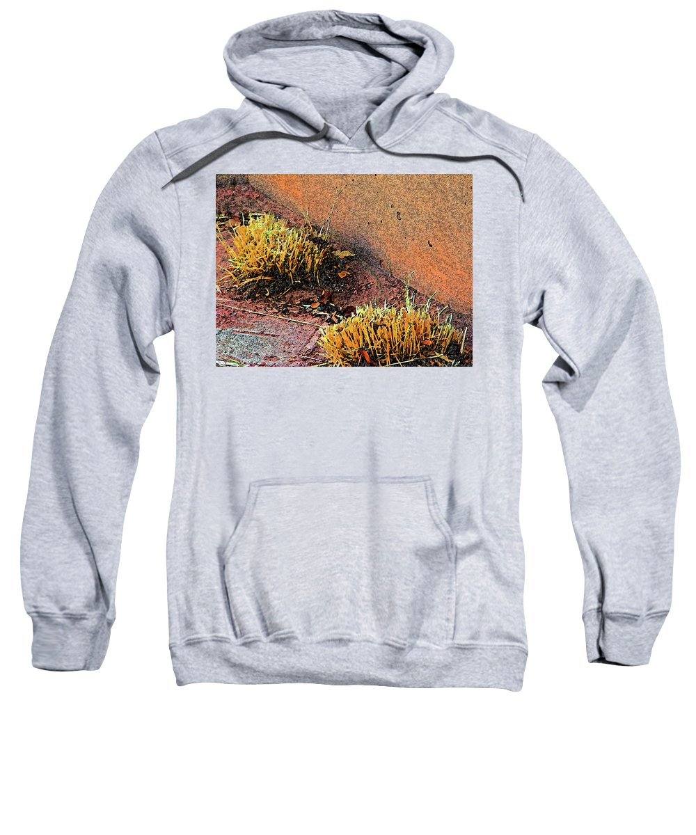 Abstract Sweatshirt featuring the digital art Pueblo Downtown Landscaping by Lenore Senior
