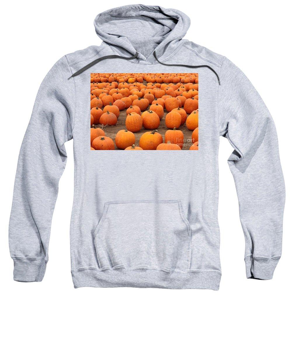 Pumpkins Sweatshirt featuring the photograph Pumpkins Waiting For Homes by Carol Groenen