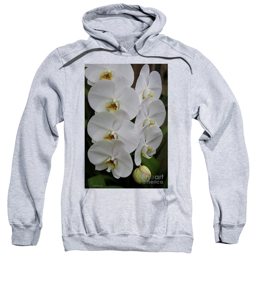 Orchids Sweatshirt featuring the photograph Purity by Deborah Benoit