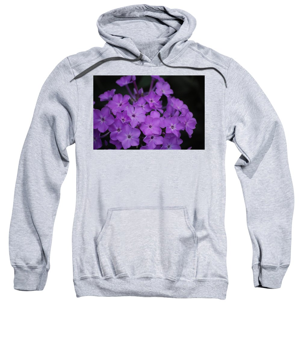 Digital Photo Sweatshirt featuring the photograph Purple Blossoms by David Lane