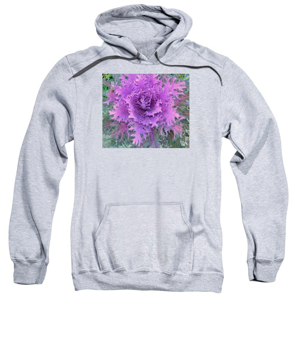 Purple Sweatshirt featuring the photograph Purple Cabbage Plant by Maro Kentros