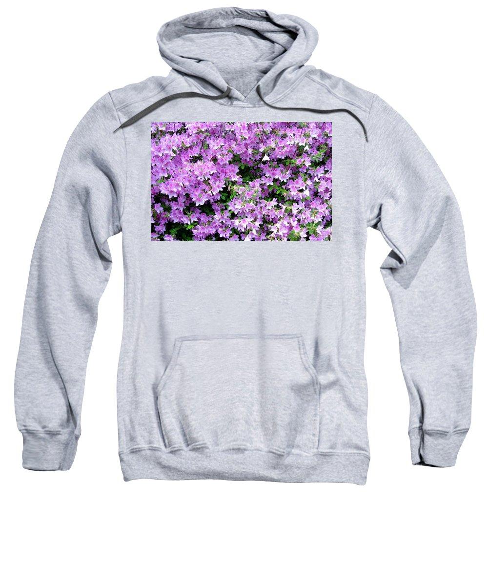 Azaleas Sweatshirt featuring the photograph Purple Passion by Deborah Crew-Johnson