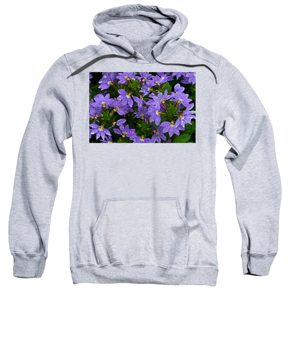 Purple Flower Plant Green Photograph Photography Sweatshirt featuring the photograph Purple Perspective by Shari Jardina