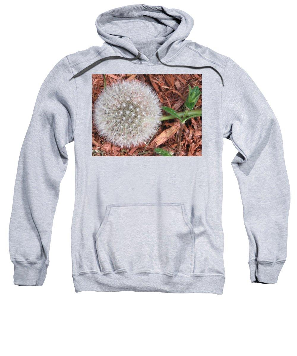 Nature Sweatshirt featuring the photograph Que La Nature Est Belle... by Line Gagne
