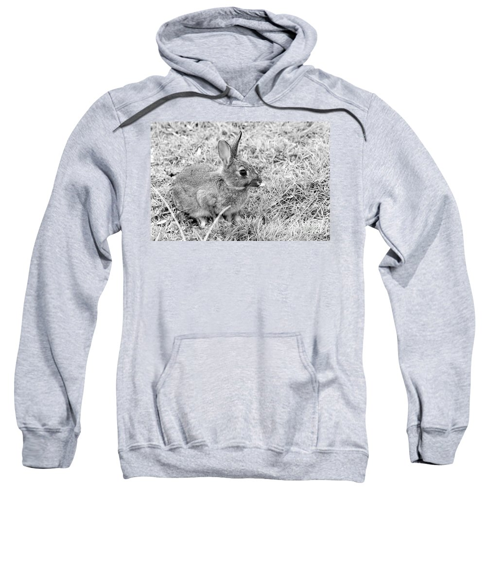 European Sweatshirt featuring the photograph Rabbit by Louise Heusinkveld