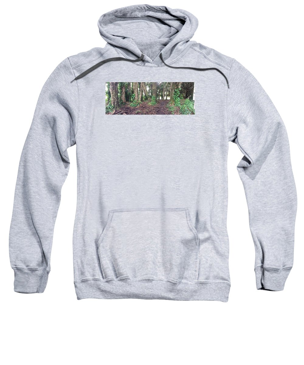Nature Sweatshirt featuring the photograph Rainbow Falls Park, Hilo by Michelle Cote
