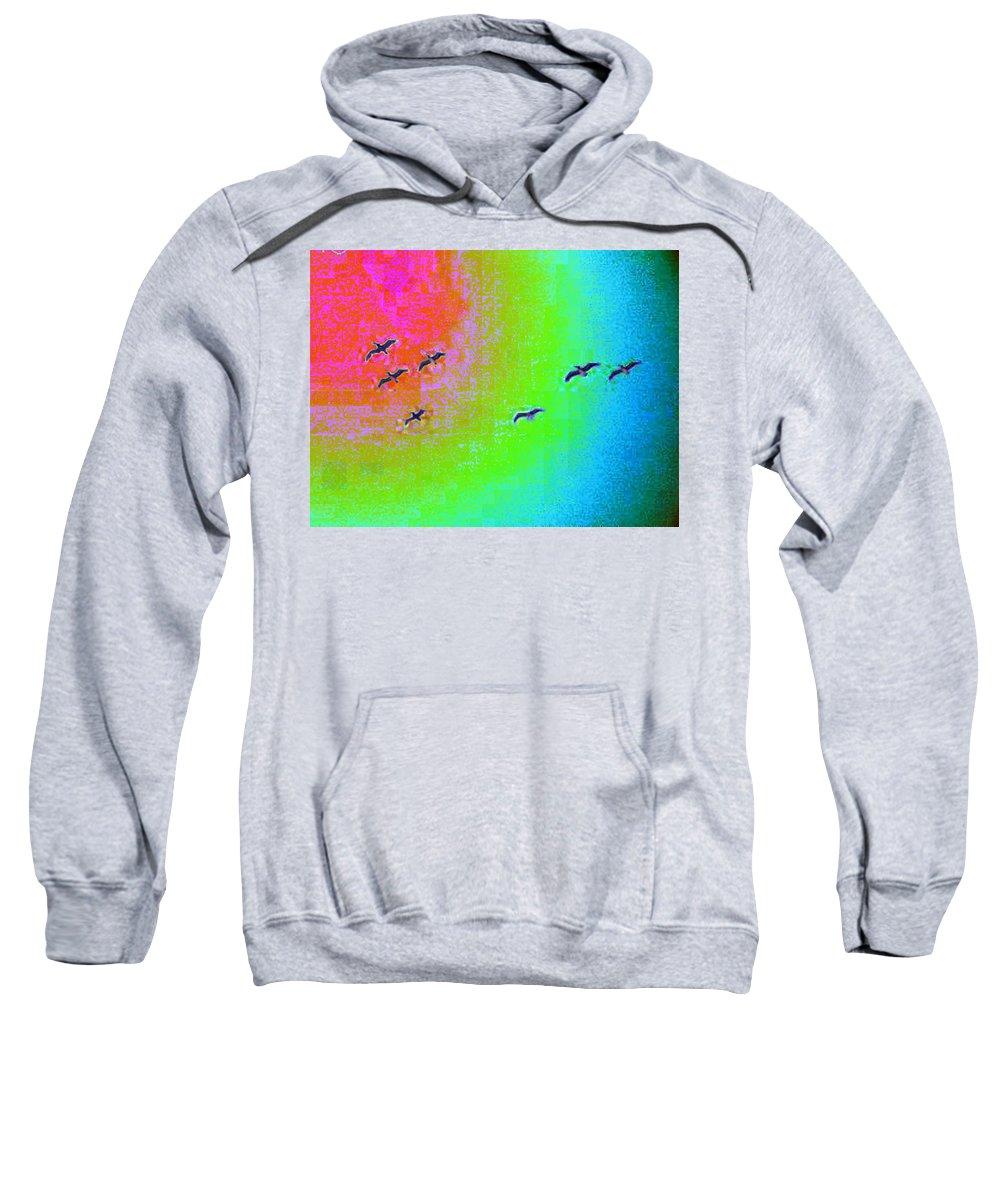 Birds Sweatshirt featuring the photograph Rainbow Gulls by Tim Allen