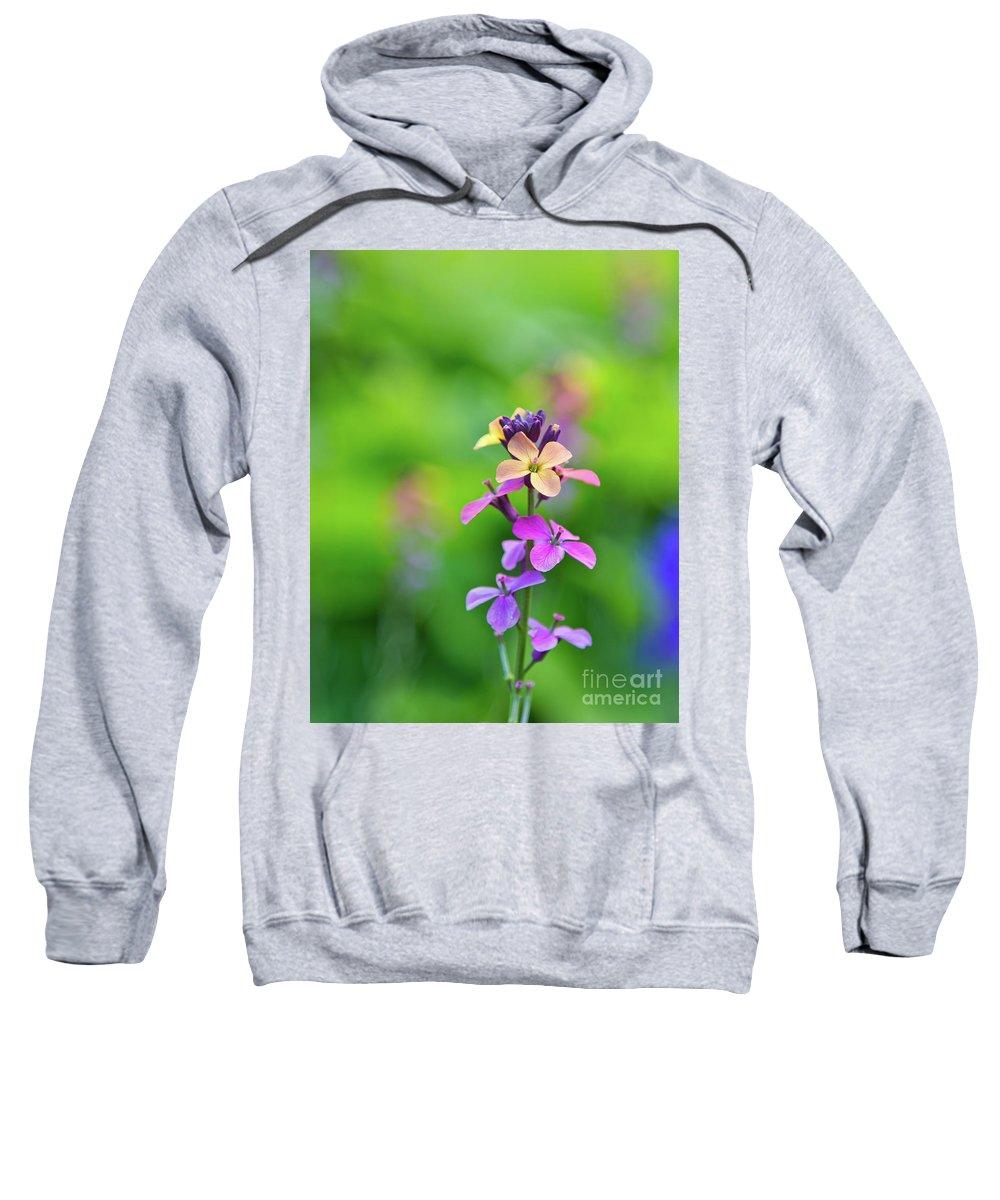 Rainbow Flowers Sweatshirt featuring the photograph Rainbow Love 2 by Alex Art and Photo
